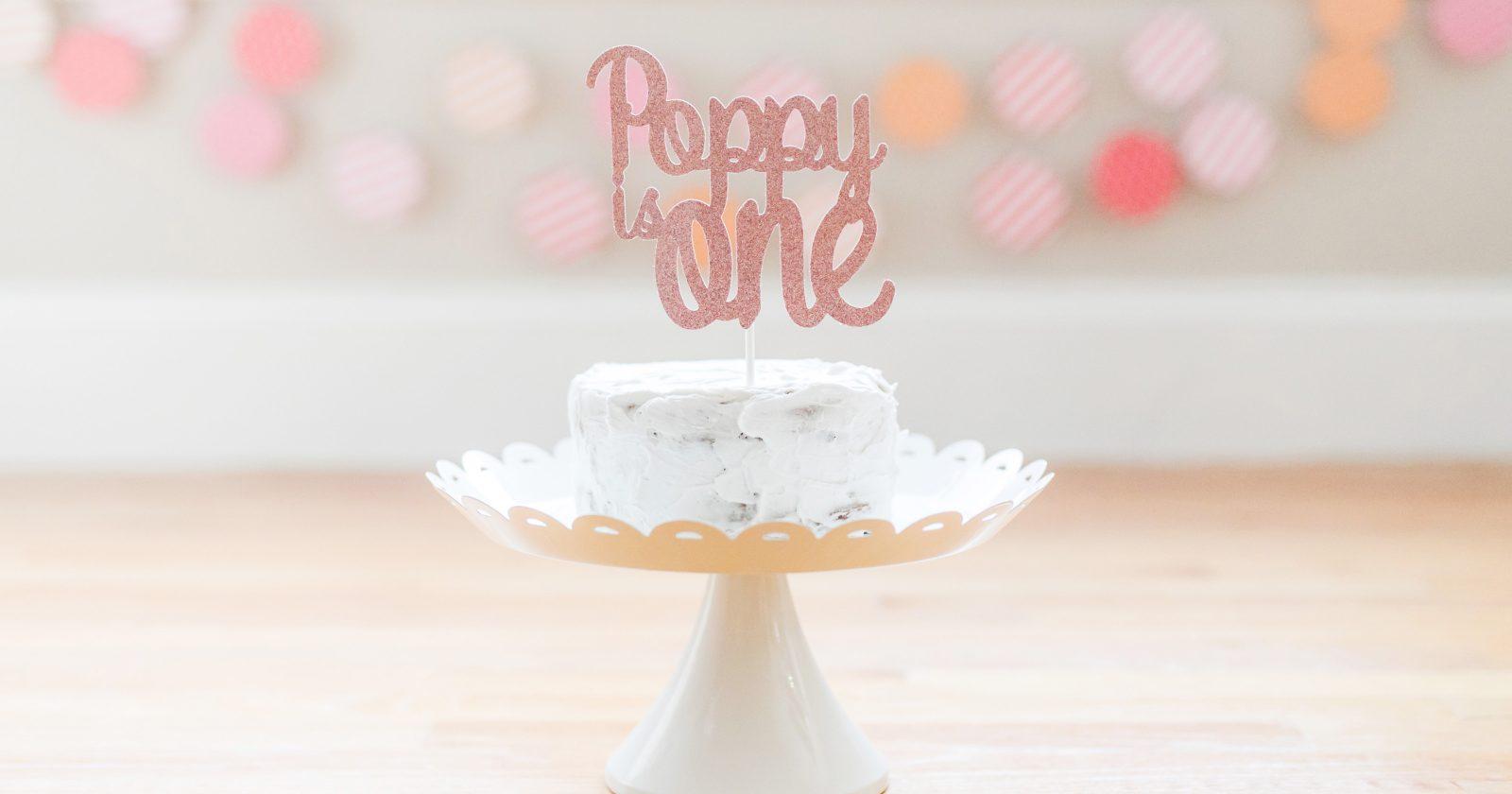 Boston Cake Smash Photos – Poppy is One!