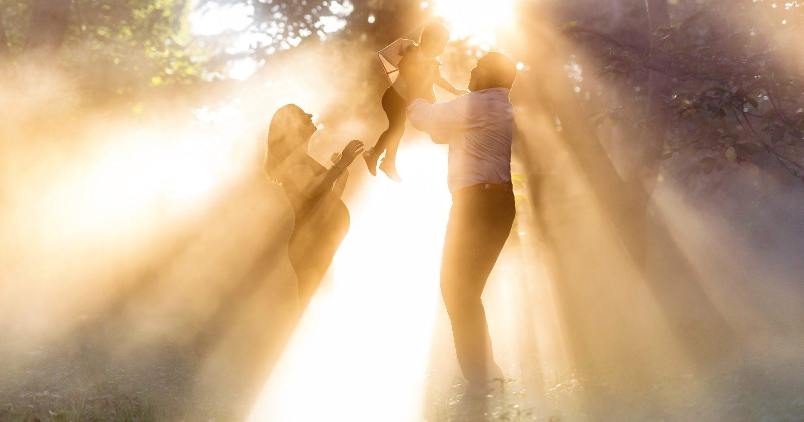 Finding New Light | Arnold Arboretum Family Session