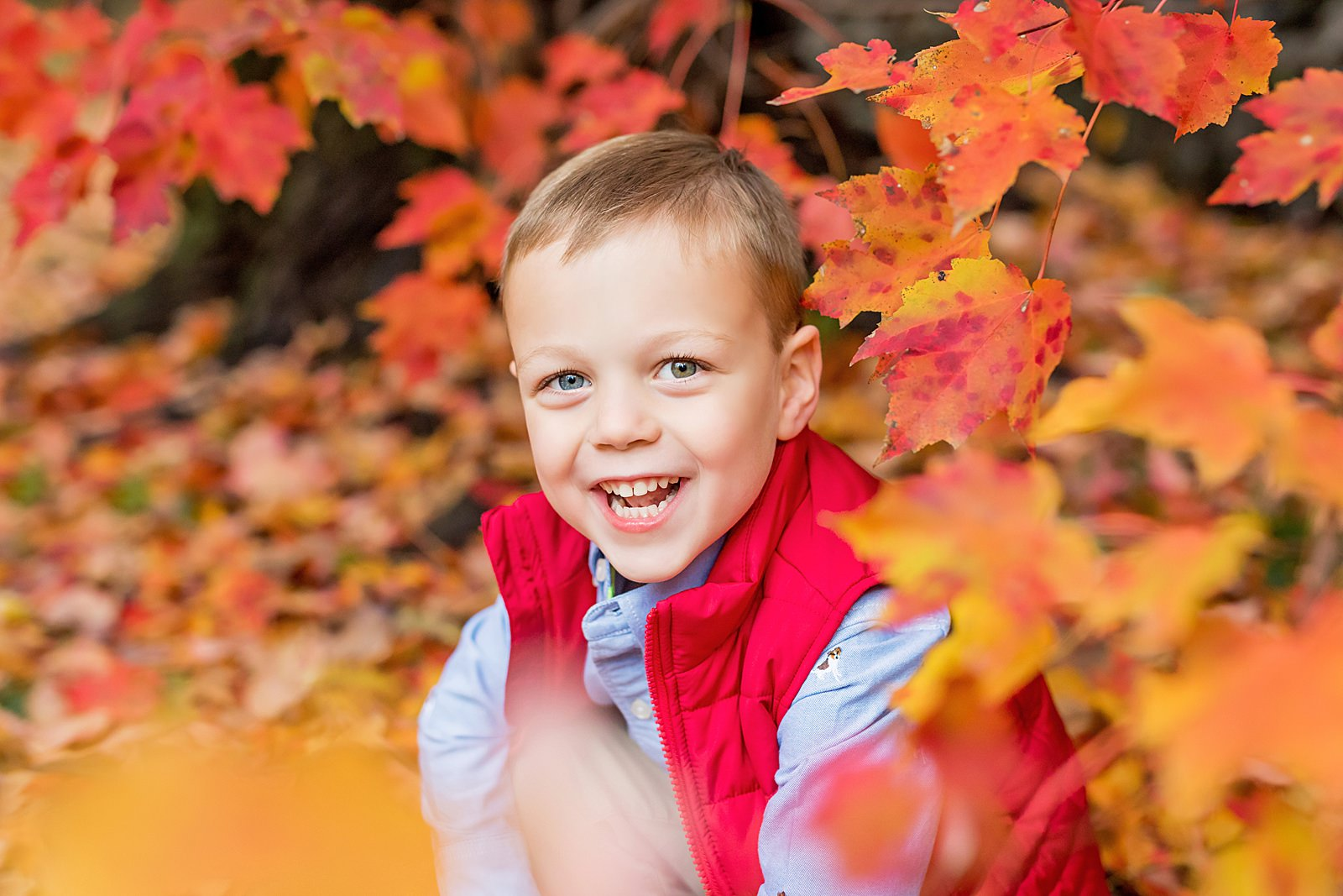 little boy in front of red leaves in new england
