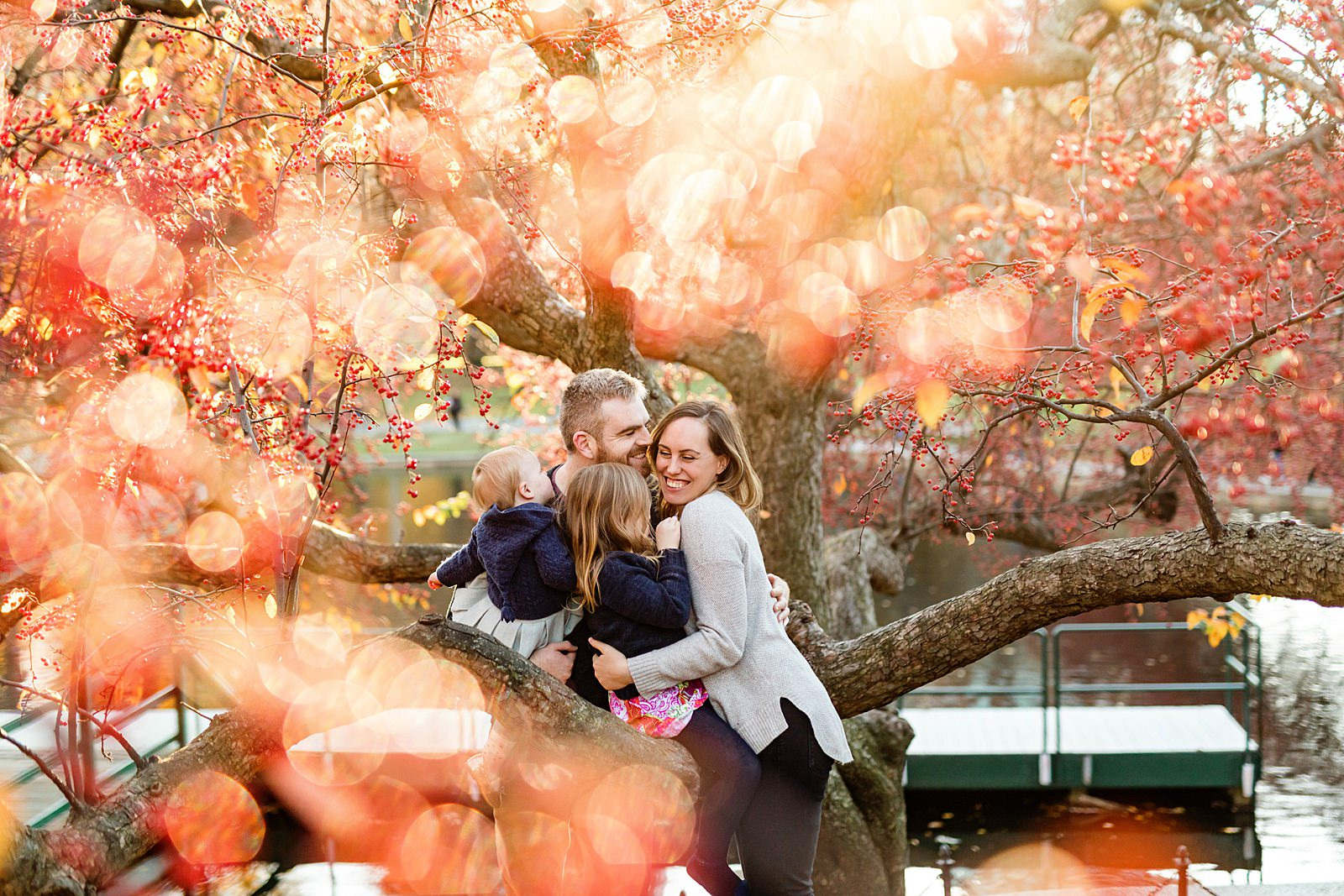 family photo through a tree with red bokeh in boston