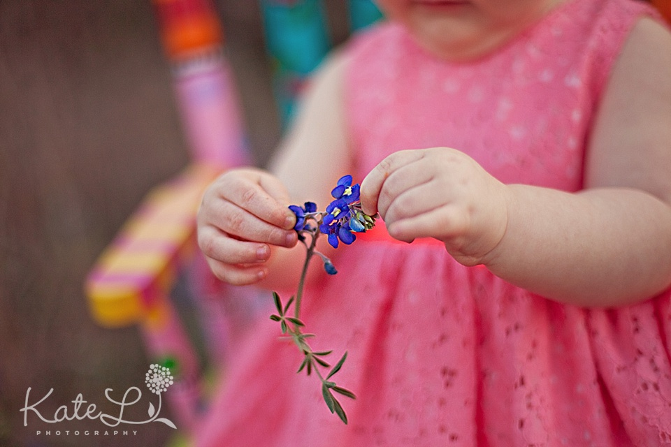 baby hands pick bluebonnets in san antonio