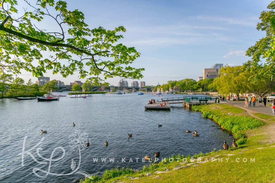 A view of Charles River Esplanade boats.
